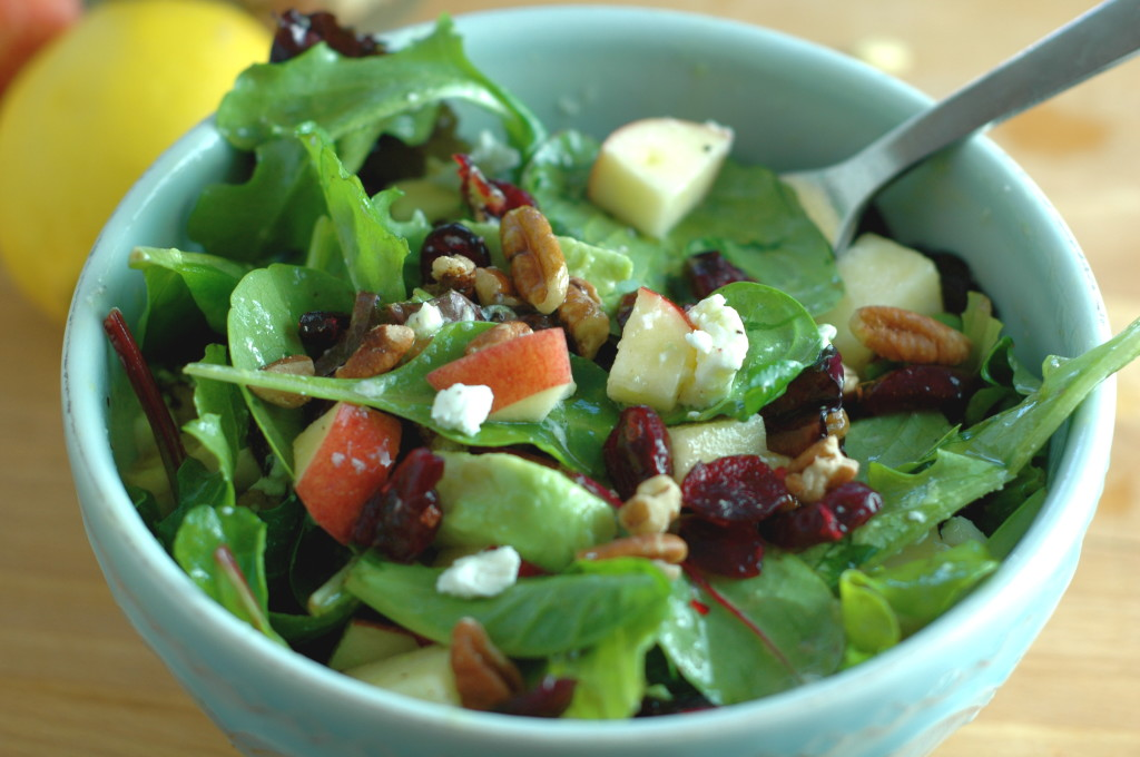 Apple, Goat Cheese, and Cranberry Salad